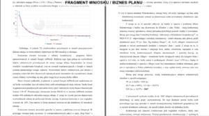 fragment dokumentu