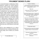 biznes plan wzór